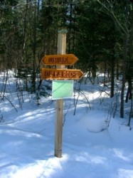 1290418_trail_sign