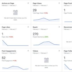 Screenshot of Facebook Page stats
